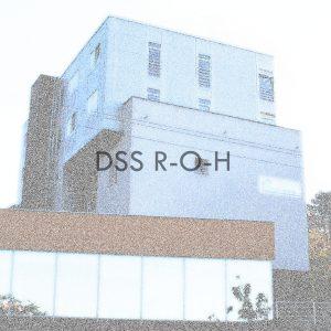 dss-r-o-h-2